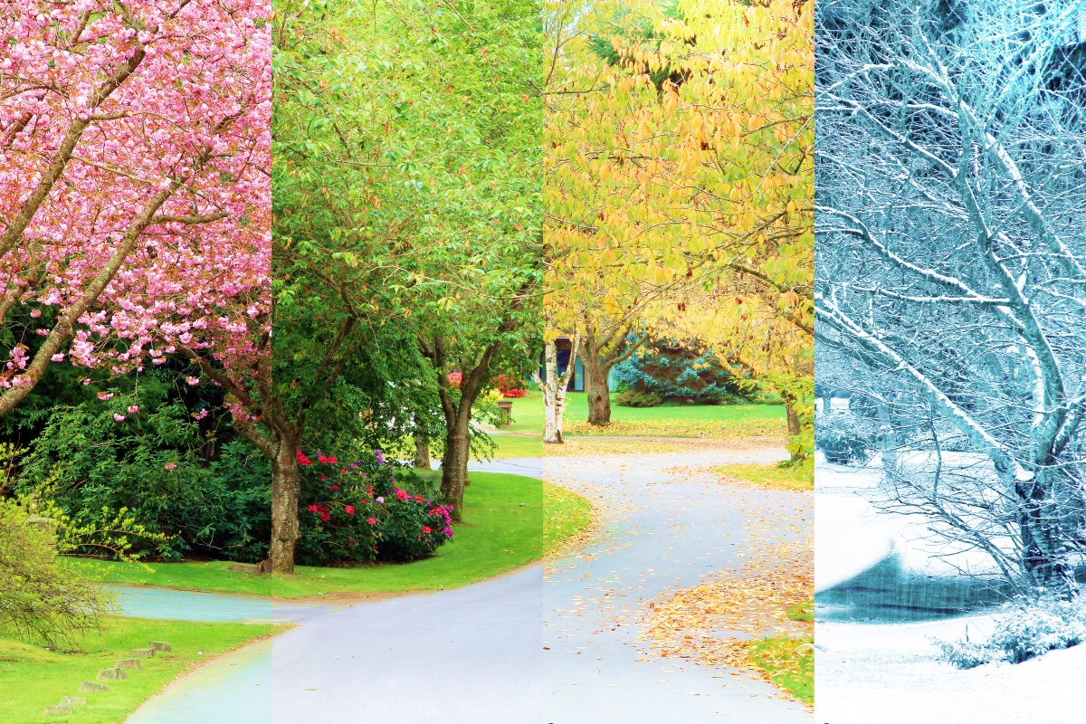 Seasons 12 X 8 Shutterstock